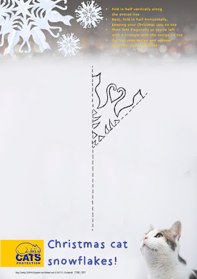 http://www.cats.org.uk/uploads/documents/COM_2891_Snowflake_template.pdf
