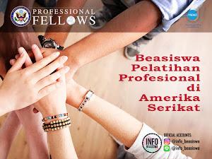 Beasiswa Penuh: Program Pelatihan Profesional di Amerika Serikat