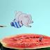 [News] Anima Mundi desembarca no Centro Cultural Banco do Brasil de 17 a 21 de julho