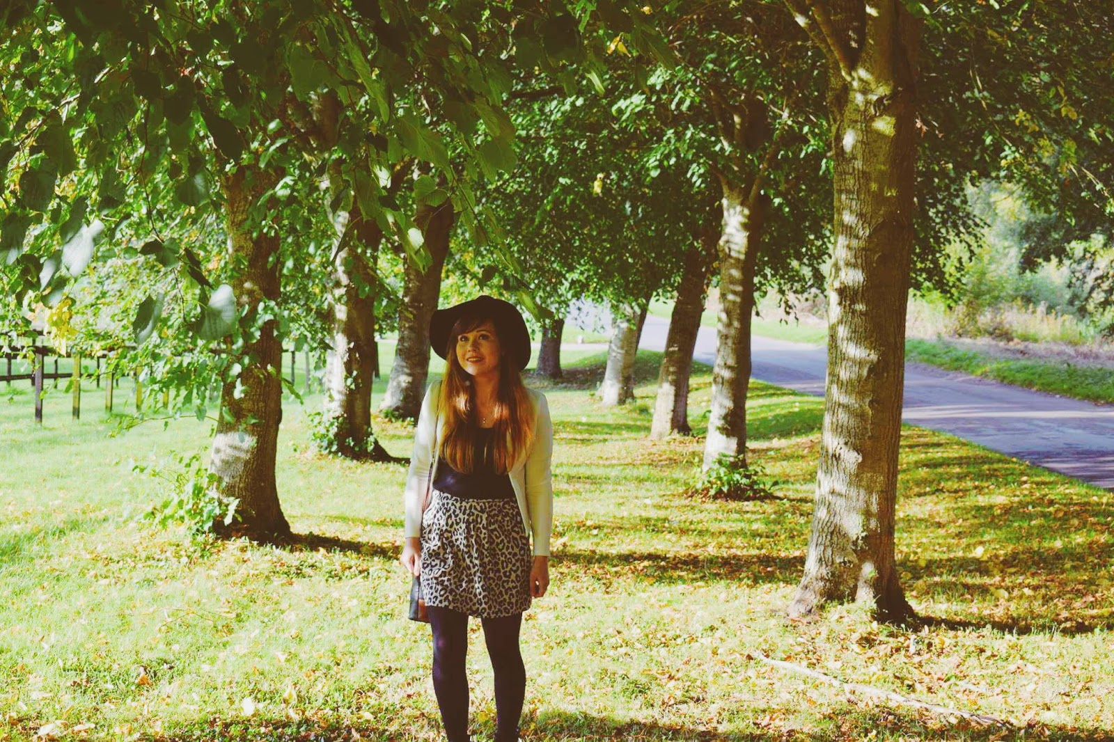 lebellelavie - Enjoying the Autumnal countryside of Salisbury