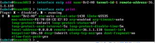 Konfigurasi Interface EoIP Router BR2