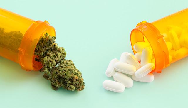 medical marijuana along with opioids.