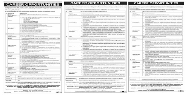 Latest National Bank Of Pakistan NBP Jobs 2021 For Software Developer,Team Lead Payment Cards,IT Analyst & more