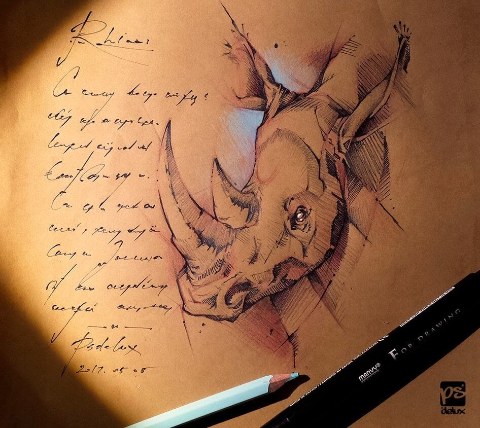 12-Rhino-Sketch-psdelux-Geometric-Animal-Sketches-and-1-Alien-www-designstack-co