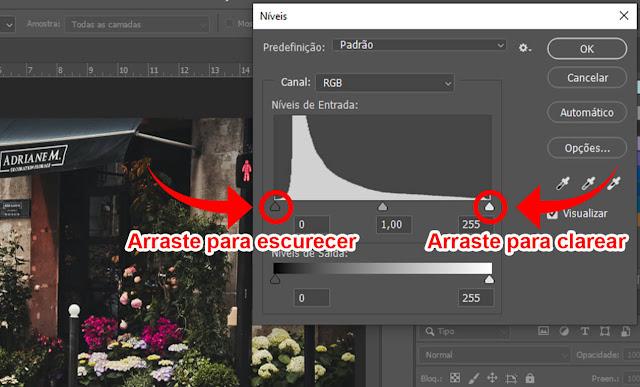 utilizando a ferramenta niveis para clarear a foto