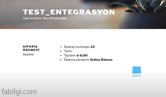 Wordpress E-Ticaret Sitesi için Sanal Pos Ödeme Eklentisi Yapımı