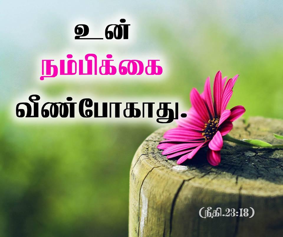 Wallpaper Desktop Bible Verses In Tamil