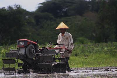 krisis regenrasi petani