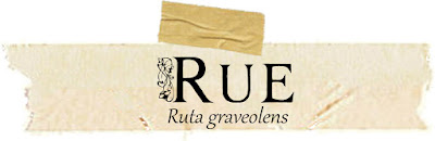 rue, magical, correspondences, medicinal