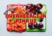Pika ui, de kracht van Curacao