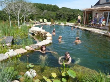 Rin Robyn Pools Swimming Pool Design And Construction