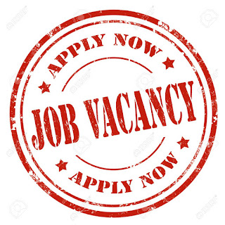 Senior Finance Officer Job at Action Health Incorporated (AHI) Lagos