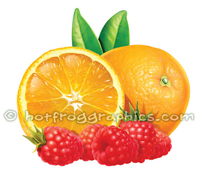illustration of oranges & raspberries on white background