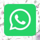 https://chat.whatsapp.com/Jt7Ku1EOA6S6kpgMHmiUti