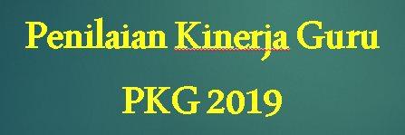Download Aplikasi/Master PKG 2019, Lengkap Dengan Responden Teman Sejawat, Siswa, Wali Siswa Dan Absensi Untuk GURU, STAFF Dan Kepala Sekolah/Kepala SKPD