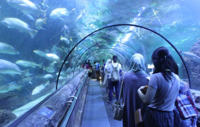 Tempat Rekreasi Indoor Sea World