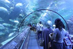 Menikmati Liburan Bersama Keluarga Di Tempat Rekreasi Indoor Di Indonesia