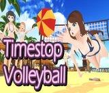timestop-volleyball