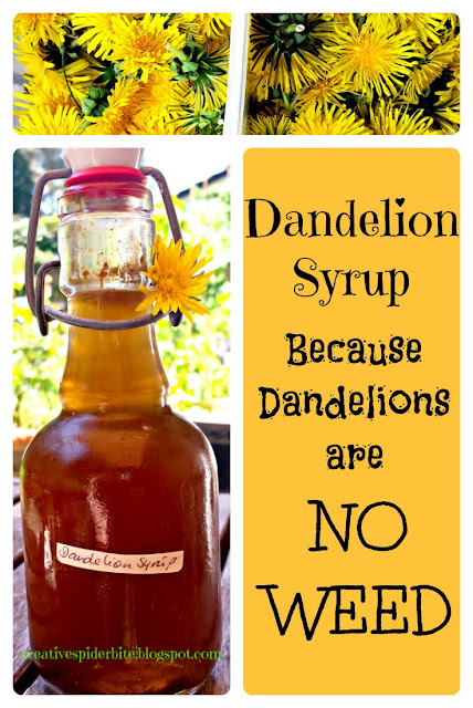 picture collage to promote Dandelion Syrup with Dandelion flower heads and a bottle of Dandelion syrup
