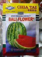 semangka bali flower, jual benih terbaru, benih cap Kapal terbang, toko pertanian, online, lmga agro