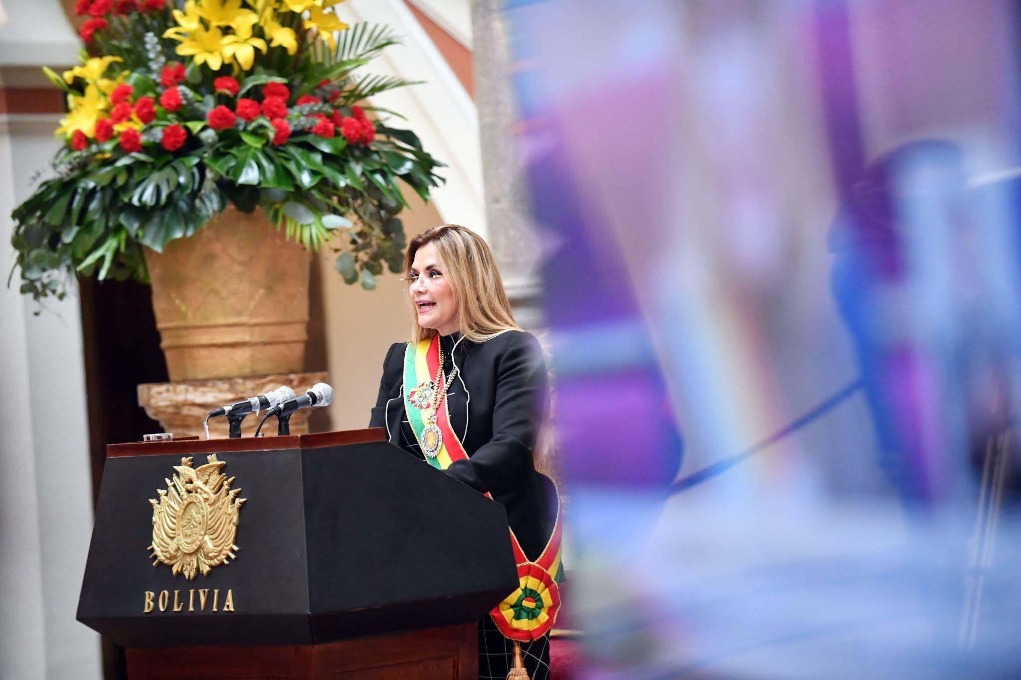 La presidenta constitucional en su mensaje por el 195 aniversario de la República / ABI