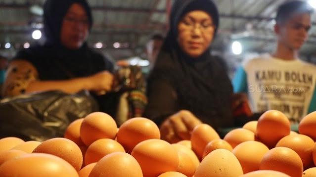 Video Telur Ayam Palsu Beredar di Media Sosial, Begini Hasil Sidaknya