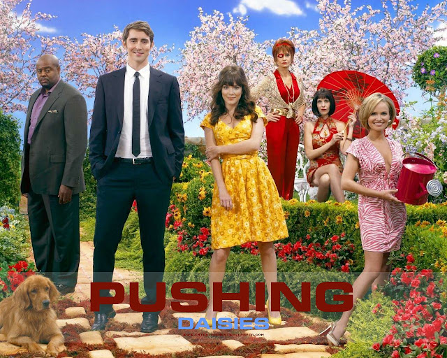 elenco de Pushing Daisies (foto: divulgação)