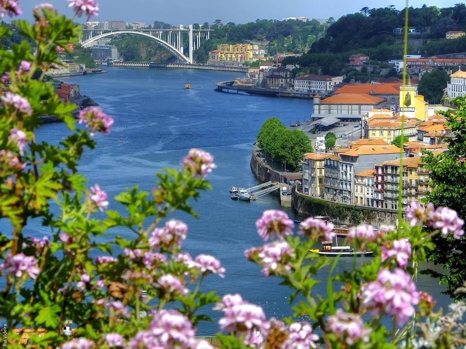 putovanja-travel-porto-lisabon-grad_mostova-harry_potter-portugal
