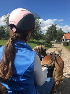 Horsexplore, Galiny, Puola, valjakkoajo, Riitta reissaa