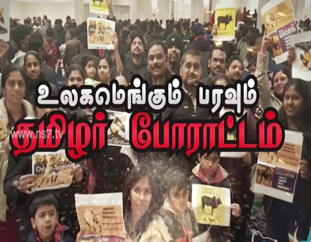 Rajan Nadarajan, Transport Commissioner, Maryland USA on Jallikattu Protest