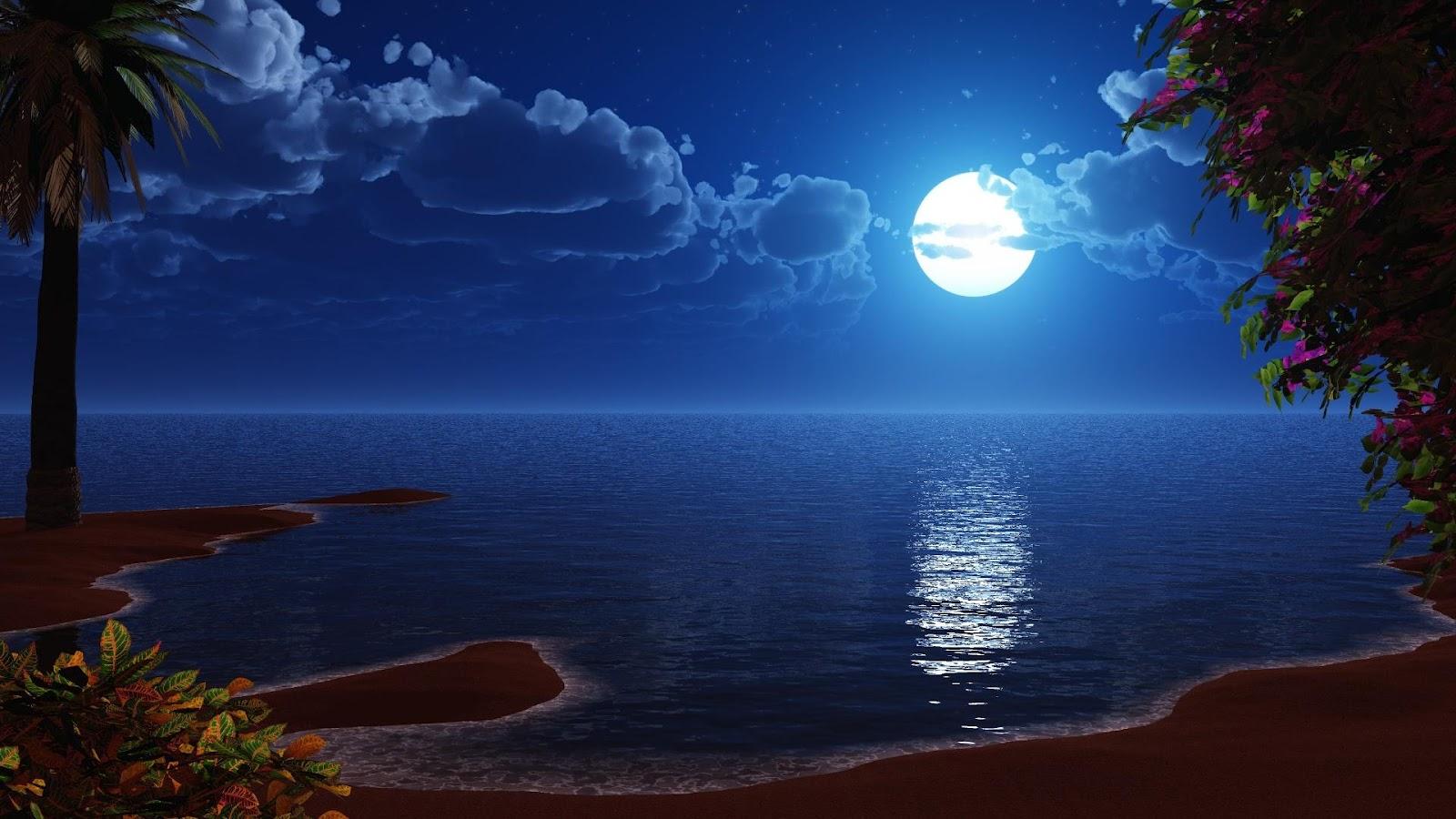 Essay on one night the moon