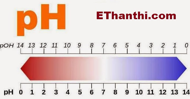 pH என்ற எழுத்தின் அர்த்தம் என்ன? | What is the meaning of the pH?