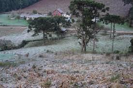 A foto mostra a neve no campo ao amanhecer e já congelada na Região Sul do Brasil.