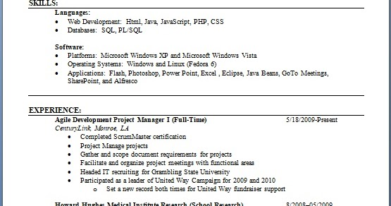 project manager agile development sample resume format in