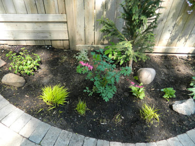 Cabbagetown Toronto garden makeover after by Paul Jung Gardening Services Inc
