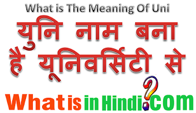 What is the meaning of Uni in Hindi