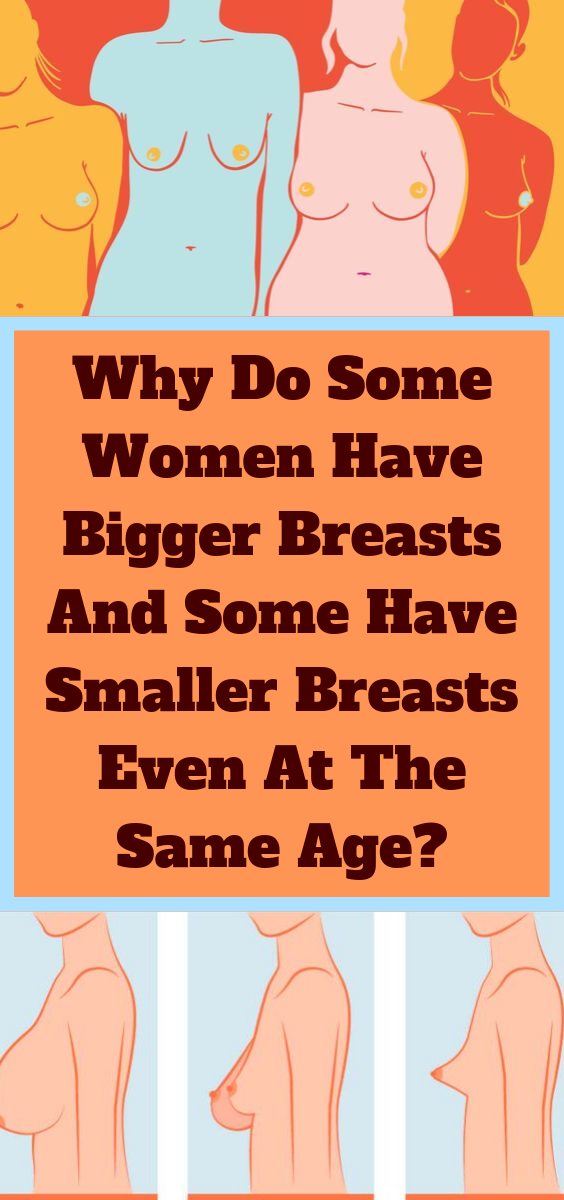 Why Do Some Women Have Bigger Breasts And Some Have -4609