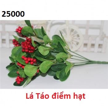 Phu kien hoa pha le tai Phu La