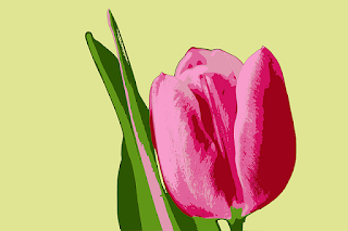 O que foi A crise das tulipas holandesas, 1636-37?
