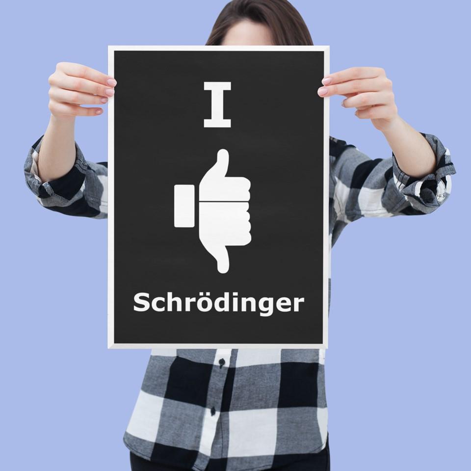 Erwin Schrodinger poster