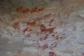 Rock Art at Bushmans Kloof
