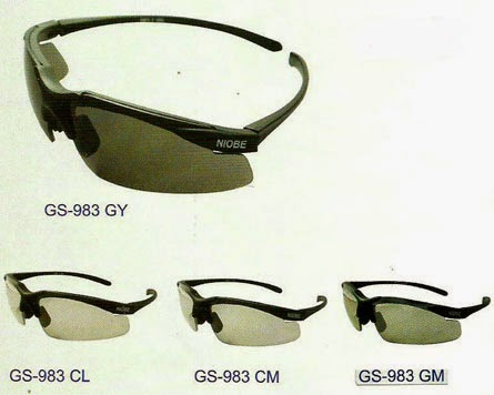 1c771e4516 Harga Prescription Safety Glasses - Bitterroot Public Library