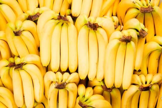 هل الموز يرفع السكر، فوائد الموز