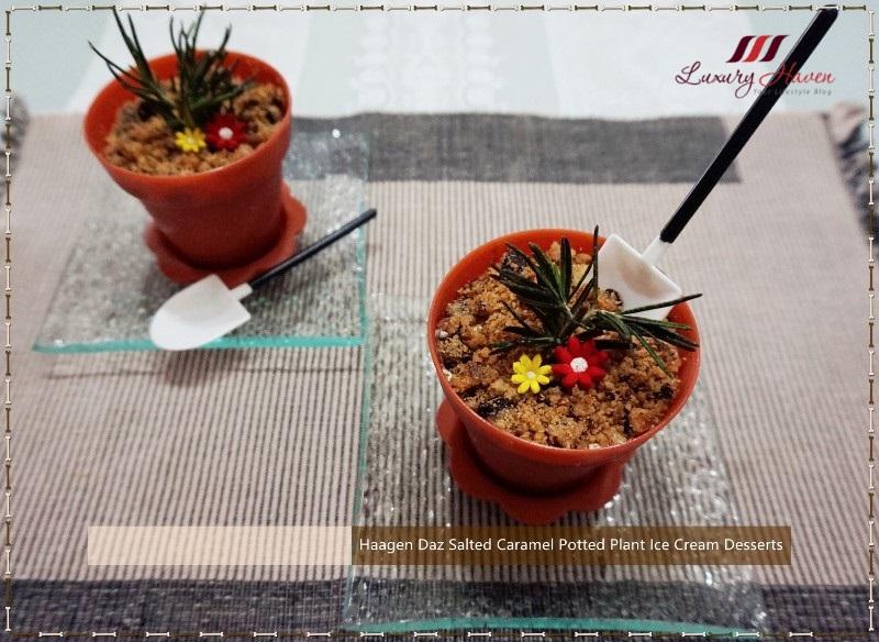 haagen dazs salted caramel potted plant desserts
