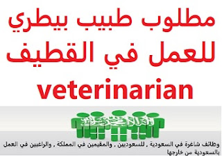A veterinarian is required to work in Qatif  To work in Qatif  Type of shift: full time  Education: Bachelor degree  Experience: Six to ten years of work in the field Fluent in Arabic and English  Salary: 3,800 riyals, which can be increased