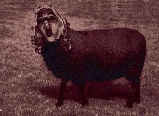La Calchona, al no poder regresar a su forma humana, quedo convertida en un ser parte oveja, parte mujer