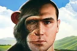 Se o homem veio do macaco então poderia ter o Chimpanzomem?