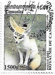 Selo Feneco ou raposa do deserto