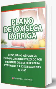 plano detox download pdf)