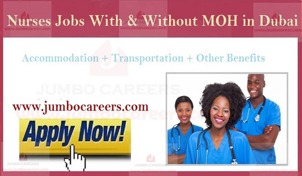 Nurse Jobs without MOH in Dubai with Free Accommodation